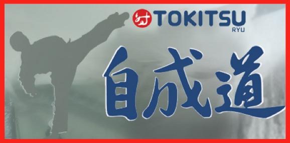 Logo Tokitsuryu